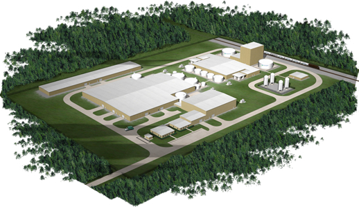 GeneSyst Plant Rendering